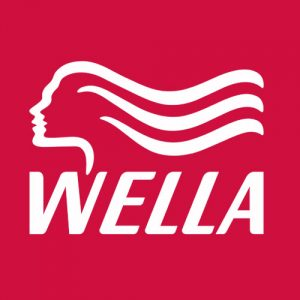 wella salon products